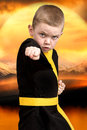 Little boy karate shows the techniques of the Japanese martial art karate. Training young athletes,Champions