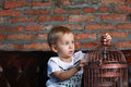 Little boy looking at the bird cage sitting on sofa Stock Photos