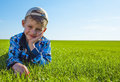 Little boy on meadow green grass Stock Image