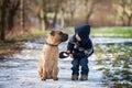Poco niño en su perro amigo