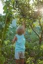 people grow natural food