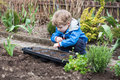 Little boy planting seeds in vegetable garden adorable blond Stock Photography