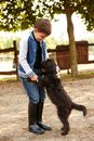 Little boy playing with dog outdoors Stock Photography