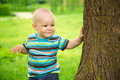 Little boy is playing hide and seek outdoors Stock Photography