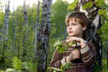 Little boy protect a birch branch Stock Photos