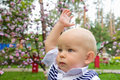 Little boy raising his hand up serious in summer park Stock Photography