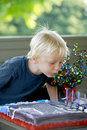 Little Boy's Birthday Royalty Free Stock Image