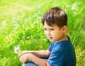 Little boy sits in the meadow on a sunny day and holding dandelion Stock Image