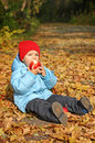 Little boy sitting on the autumn leaves Royalty Free Stock Image