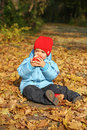 Little boy sitting on the autumn leaves Stock Photos