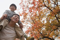 Little boy sitting on his fathers shoulders walking through the park in autumn Stock Image
