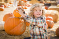 Little boy sitting and holding his pumpkin at pumpkin patch adorable in a rustic ranch setting the Royalty Free Stock Image