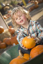 Little boy sitting and holding his pumpkin at pumpkin patch adorable in wheelbarrow in a rustic ranch setting the Stock Image