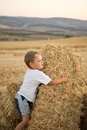 Little boy sitting on the stubble summer mown wheat Royalty Free Stock Image