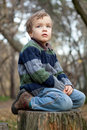 Little boy sitting on the  tree stump, fall, park Royalty Free Stock Image