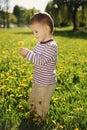 Little boy in spring dandelion meadow Royalty Free Stock Photo
