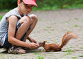 Little boy and squirrel cute feeding at park Royalty Free Stock Photos
