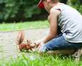 Little boy and squirrel cute feeding at park Royalty Free Stock Image