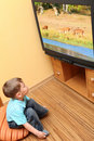 Little boy watching cinema on TV Stock Images