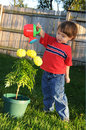 Little boy watering marigolds Stock Photography
