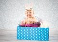 Little bunny in the box Royalty Free Stock Photos
