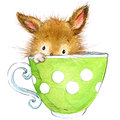 Little bunny and tea party. watercolor