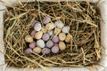 Little candy easter eggs basket straw Royalty Free Stock Photos