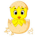 Little cartoon chick hatched from an egg Royalty Free Stock Photo