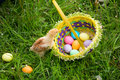 Little chicken on green meadow with colorful easter eggs in bask Royalty Free Stock Photo