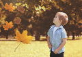 Little child in autumn sunny park looking up flying maple leaves Royalty Free Stock Photo