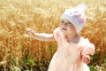 Little child girl wondering in wheat field Royalty Free Stock Images