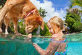 Little child swim with dog in blue swimming pool. Royalty Free Stock Photo