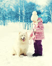 Little child with white samoyed dog on leash in winter park Royalty Free Stock Image