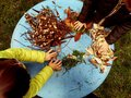 Little children playing, expolring and gardening in the garden with soil, leaves, nuts, sticks, plants, seeds during a school