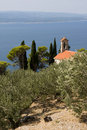 Little Church and Olive Grove Stock Photos