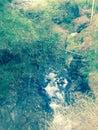 Little creek near ciwidey river Stock Photo