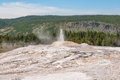 Little Cub Geyser Royalty Free Stock Photo
