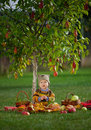 Little cute boy with the harvest Royalty Free Stock Photo
