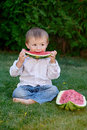 Little cute boy sitting on grass in park and eating a watermelon Royalty Free Stock Photo
