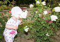 Little cute child girl with flower on nature use it for baby parenting or love concept Stock Images