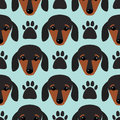 Little dachshund puppy head seamless pattern dog young pedigreed animal breed vector illustration