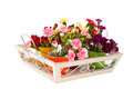 Little dianthus on white tray flowers in colorful vases Stock Photo