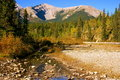 Little Elbow River Valley Royalty Free Stock Images