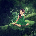 Little fairy girl Royalty Free Stock Photo