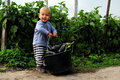 Little farmer vegetables field boy lifting a bucket full of aubergines egg plants Royalty Free Stock Image