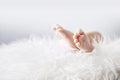 Little feet of a newborn child Royalty Free Stock Photo