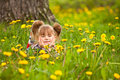 Little five-year girl lying in grass Royalty Free Stock Photo
