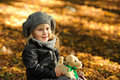 Little girl in autumn leaves Stock Photography