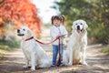 Little girl in autumn Park walking beautiful dogs