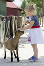 Little girl and billy goat eating ice cream being followed by Stock Photo
